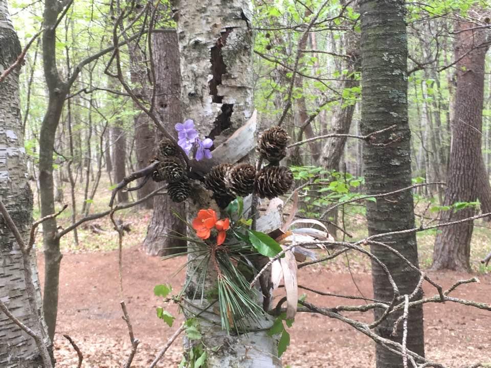 森林アートセラピー@くらしまわり春〜夏2021